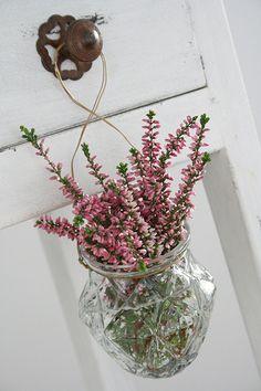 Doorknob vase - heather in a jelly jar Scottish Heather, Pots, Hanging Vases, Vases Decor, Flower Vases, Cottage Style, Home Deco, Floral Arrangements, Flower Arrangement