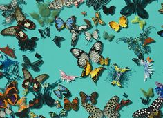 Crush on the new Christian Lacroix collection… / The English Room Blog