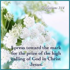 """""""I press toward the mark for the prize of the high calling of God in Christ Jesus."""" Philippians 3:14 KJV"""