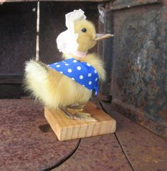 Taxidermy Duckling Jemima puddle duck by agiftfromgerty on Etsy