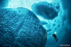 diver underwater in Greenland beneath iceberg