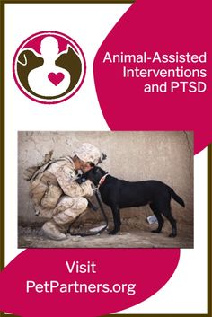 Animal-Assisted Interventions and PTSD | Pet Partners | Animal-assisted inventions can help those suffering from PTSD and other mental illnesses. Pet Partners is proud to support veterans and others suffering from PTSD. This blog discusses the benefits animals have in the lives of people suffering from PTSD and related mental illnesses. Therapy animals, like cats, dogs, guinea pigs and more, have an impact on the humans they service. Find out more on PetPartners.org. Emotional Support Dog Training, Emotional Support Animal, Psychiatric Services, Psychiatric Service Dog, Mental Health Disability, Ptsd Symptoms, Training Quotes, Continuing Education