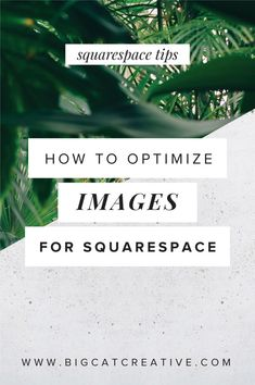 Squarespace Tips | Squarespace tips and tricks | Squarespace DIY | Squarespace Tutorials | how to optimize images for Squarespace | best practice for uploading images to Squarespace | DIY designer | Squarespace Design | Squarespace website design |