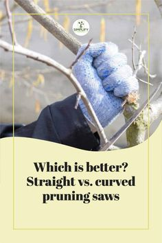 Both curved and straight pruning saws are equally effective in their own field, but straight saws boast more versatility. // Gardener Tools // Garden Pruner // Prunes // #gardener #pruningtrees #pruningsaw Vegetable Garden Soil, Organic Soil, Tools, Instruments