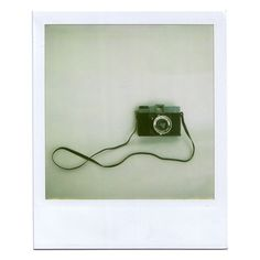 Polaroid image by mckenziee312 on Photobucket ❤ liked on Polyvore