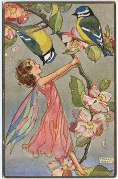 Molly Brett , Apple Blossom Fairy