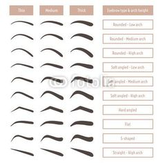 Eyebrow shapes. Various types of eyebrows. Classic type and other. Trimming. Vector illustration with different thickness of brows. Set with captions. Makeup tips. poster
