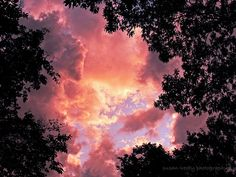 Nature's Window by medtechno, via Flickr