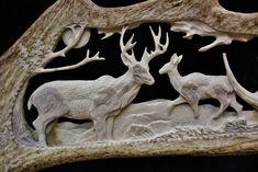 Scène représentant un cerf accompagné de sa femelle en arrière-plan. Le mâle aperçoit un rival.