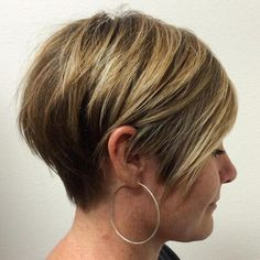 Brown Blonde Pixie Bob
