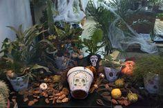 Escaparate Mexican Halloween, Hiking Boots, Skull, Shop Displays, Skulls, Sugar Skull