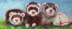 Four Frolicking Ferrets Ginger Jamerson