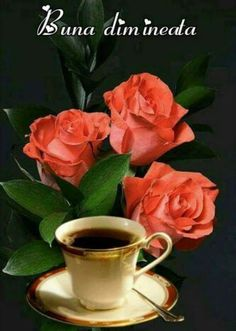 Good Morning Wishes, Good Morning Quotes, Good Night, Bucharest, Full Episodes, Feelings, Coffee, Photography, Roses