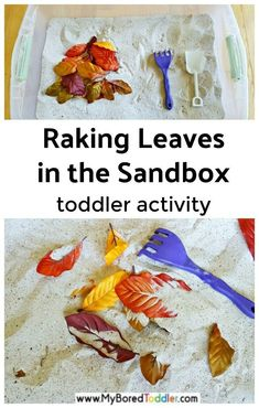 Raking Leaves Fall Sand Play Autumn leaves in the sandbox fall toddler activity -a fun and easy toddler fall activity or autumn activity - easy sensory play activity for one year olds, two year olds, three year olds. Fall Activities For Toddlers, Activities For One Year Olds, Gross Motor Activities, Infant Activities, Sensory Activities, Fall Activities For Kids, Learning Activities, Outdoor Activities, Fall Sensory Bin
