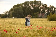 Jules Photographer Italy - Tuscany beautiful field of red poppies, are you kidding me?  LOVE!