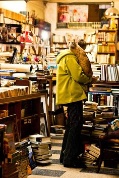 Bookstore Cat | Flickr - Photo Sharing!