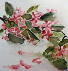 Prunus Blossom (Watercolour 17 x 18cm)