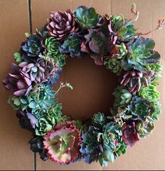 XL 22 succulent wreath  by Fairyblooms on Etsy, $243.00