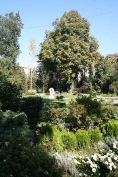 #garden #landscape #architecture #green #art Landscape Architecture, Landscape Design, Green Art, Bucharest, Fields, Interior Design, Holiday Decor, Garden, Plants