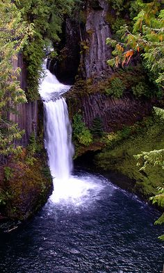 Toketee Falls...will see this in two weeks!