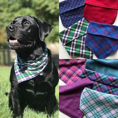 Trendy Fashion Style Women's Clothing Online Shopping - SHOP NOW !         Who is getting the fall itch??? These great cotton flannel plaids are up on the website !!!! Limited quantities so grab fast !!!! #bigdog #largedoglove #mansbestfriend #puppies #fall #fallfashion #dog #dogs #labrador #dapper #dapperdog #dogstyle #moderndog #fallstyle dapperdog,fallstyle,dapper,puppies,fallfashion,fall,dogs,largedoglove,dog,moderndog,labrador,bigdog,dogstyle,mansbestfriend VIA…