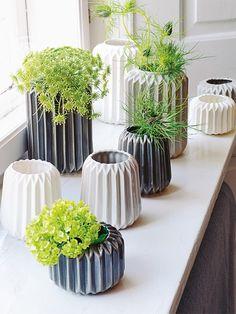 Feng Shui Pflanzen Wohnzimmer Wohnideen | Zimmerpflanzen ... Pflanzen Nach Feng Shui Energie Haus
