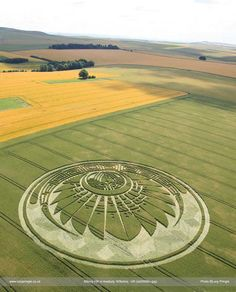 Lucy Pringle's Crop Circle Photograph Library : Silbury Hill, nr avebury, Wiltshire, 5th July 2009