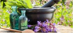 Ever wonder what an ancient Roman herb garden would have looked like? Perhaps you wonder what are ancient herbs. Find the answers to these questions in this article, as well as information on how to create an ancient herb garden of your own. Healing Herbs, Medicinal Plants, Herb Plants, Healing Oils, Healing Power, Homeopathic Medicine, Herbal Medicine, Chinese Medicine, Herbal Remedies