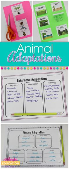 Animal adaptations are such a fun science unit to teach in upper elementary. This blog post shares lots of ideas for different activities to teach about different animal adaptations, including hibernation, mimicry, and more. Click through to get ideas for your 3rd grade, 4th grade, or 5th grade classroom!