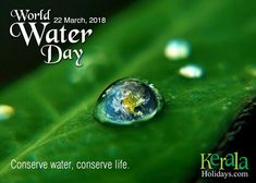 """""Pure water is the world's first and foremost medicine."""" On this #WorldWaterDay, let's pledge to safeguard our water resources and secure a water-scarcity free future through sustainable practices.  #WaterDay #WaterDay2018 #SaveWater #SaveLife #March22 #keralaholidays #WWD2018 #water"
