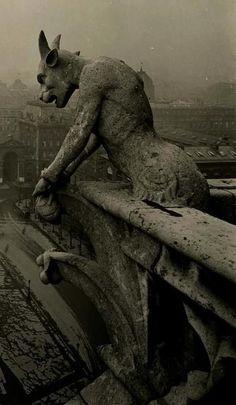 Gárgola de Notre Dame de Paris