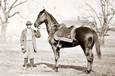 General Ulysses S.s horse, Cincinnati, in This was Grant's favorite horse, and he rode Cincinnati to negotiate Robert E.s surrender at Appomattox Court House in four years after this stereogram was taken. American Civil War, American History, American Presidents, Old Pictures, Old Photos, Civil War Photos, Vintage Horse, Time 7, Us History