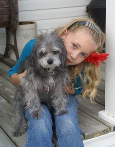 Sweet ... JhC #Dog #Pet