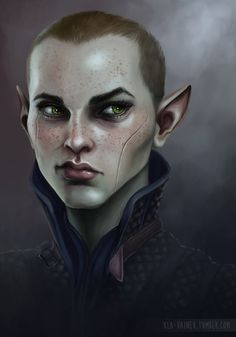 Love this one so much I couldn't resist re-pinning :-) > Grey Warden Surana by xla-hainex on deviantart
