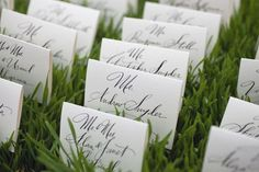 Escort Cards in Grass