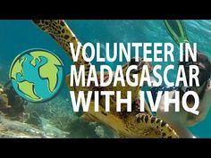 Volunteer in Madagascar with International Volunteer HQ (IVHQ)! We have a wide range of volunteer abroad projects available in Madagascar, including Marine C. Forest Conservation, Volunteer Abroad, Personal Fitness, Gap Year, Madagascar, Travel Essentials, Kenya, Good To Know, Places To Travel