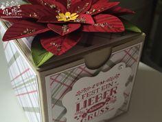 Stampin Up, Weihnachtsstern-Stanze, Box (7) (Kopie)