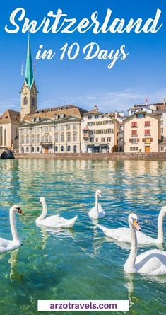 My 5 favorite places in Zurich. Must-see places to visit in Zurich. Nature Check out the best Zurich itinerary for tips about the best things to do in Zurich in 2 days (or longer) - the most best places to visit in Zurich & more. Backpacking Europe, Europe Travel Guide, Travel Destinations, Travel Guides, Mall Of America, European Destination, European Travel, Best Places To Travel, Cool Places To Visit