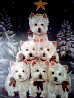 Westie tree....oh be still my ♥ ...Merry Christmas....I Miss by babies Molly..Mick..CoCo & Boomer...Time for New Buddy!