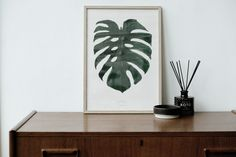 The By Garmi Monstera Deliciosa Plant print, styled by: Noden.co