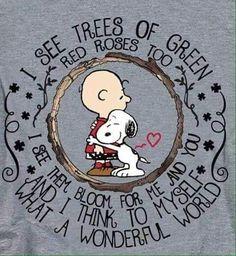 Charlie Brown Et Snoopy, Meu Amigo Charlie Brown, Charlie Brown Quotes, Charlie Brown Valentine, Charlie Brown Christmas, Snoopy Frases, Snoopy Quotes, Peanuts Cartoon, Peanuts Snoopy