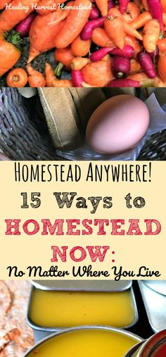 """How to start a homestead. Things you can do right now to start homesteading. Homestead in the city! Homestead in an apartment! Find out how to homestead no matter where you are. Have you been wanting to start your own homestead? Well, you can! No matter where you live, there are things you can do right now to start your homestead journey. Here are my top 15 things you may be able to start doing now, along with five more """"mindset"""" ideas!"""