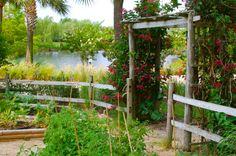 chef garden   MY HOTEL LIFE: A Chef's Garden