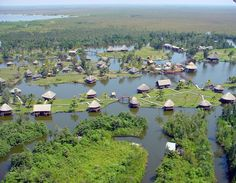 Cienga de Zapata Swamp, Mantazas province, Cuba - The Caribbean's largest wetland ecosystem, 1893 sq miles and surrounds the 13 mile long Bay of Pigs inlet. The area contain over 900 species of flora, 171 species of birds, 31 species of reptiles and 12 species of mammals.