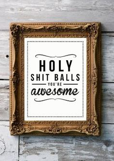 Holy Shit Balls You're Awesome!! In vintage golden frame, cool mix
