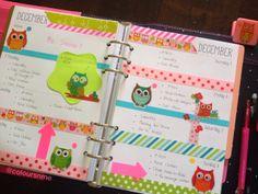 Coloursnme: Week in my Kikki-K Fuchsia Time Planner