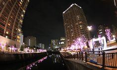 Meguro-RIver, Osaki, Tokyo, Japan.