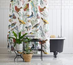 Covered with intricate artwork in a rainbow of hues, our Fauna Bird Print Shower Curtain is a whimsical addition to the bath. It coordinates with any color and with our Fauna Bedding for a complete look. Bird Shower Curtain, Vinyl Shower Curtains, Bedroom Curtains, Pottery Barn Shower Curtain, Modern Bathroom Design, Bathroom Interior Design, Interior Decorating, Decorating Tips, Timeless Bathroom