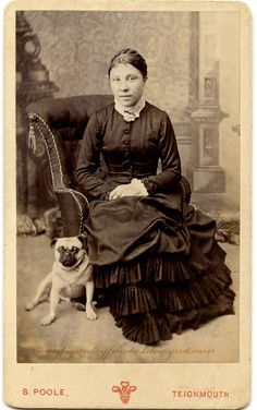 The Antique Dog Photograph Gallery: The Pug by Poole Pug Photos, Pug Pictures, Pug Pics, Family Pictures, Cute Beagles, Cute Pugs, Funny Pugs, Old Pug, Pug Art