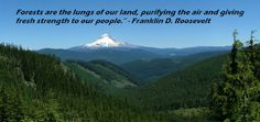 """Forests are the lungs of our land, purifying the air and giving fresh strength to our people."""" -Franklin D. Roosevelt"""